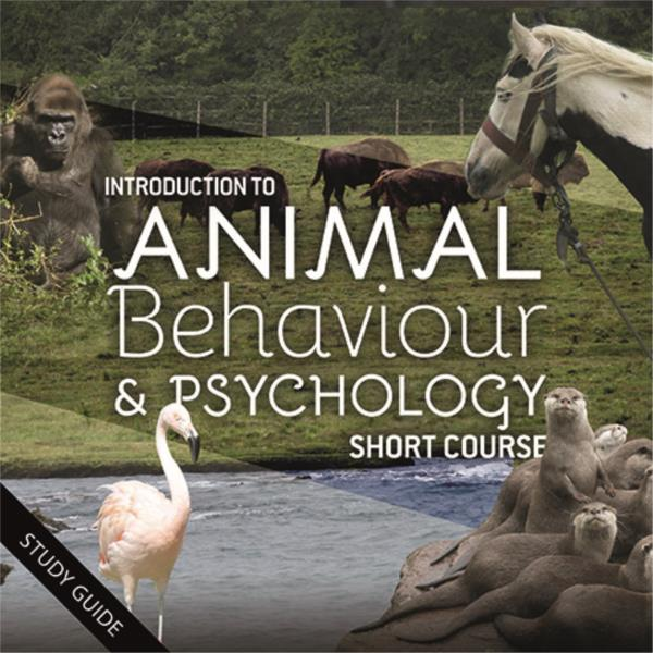 Short Course- Animal Behaviour and Psychology