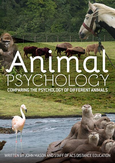 Animal Psychology - PDF Ebook