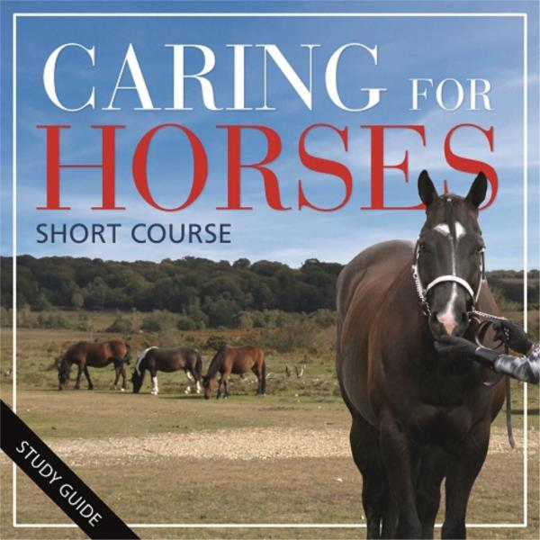 Short Course- Caring for Horses