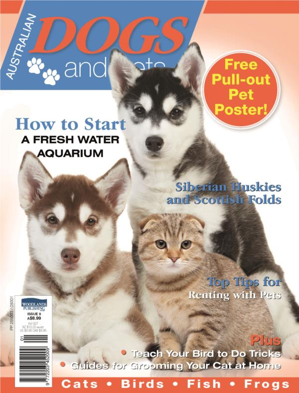 Dogs and Pets Magazine- Annual Subscription