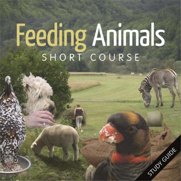 Feeding Animals Short Course