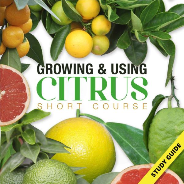 Growing and Using Citrus- Short Course