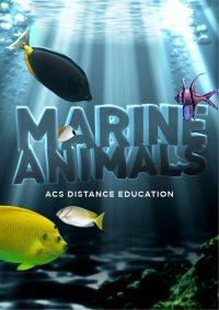 Marine Animals - PDF
