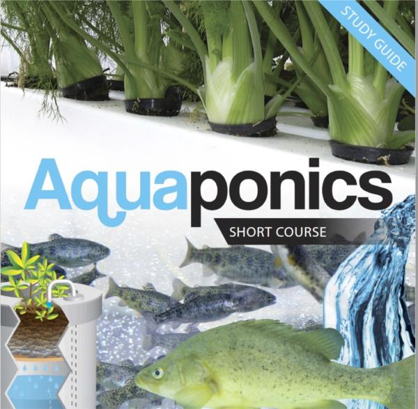 Short Course Aquaponics