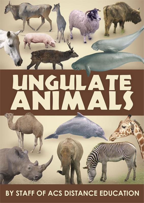 Ungulate Animals ebook